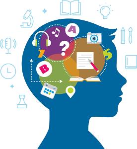 Brain full of information